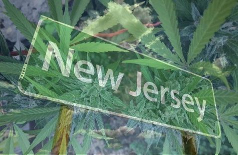 Successful vote by New Jersey lawmakers puts cannabis legalization bill on 2020 ballot