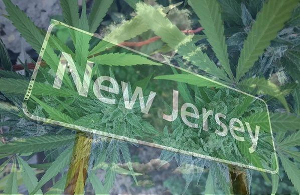 New Jersey offers employment protections for registered medical cannabis patients