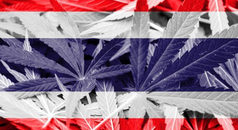 Uruguay is the first country to legalize social cannabis nationwide