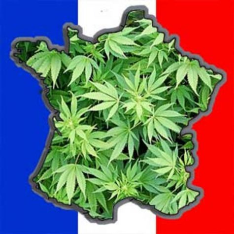 France will launch a two-year medical cannabis trial program to assess plant's efficacy