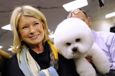 Martha Stewart is collaborating with Canopy Growth to launch a CBD line for pets