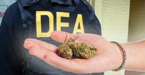 DEA responds to lawsuit, pushing forward with medical cannabis research applications