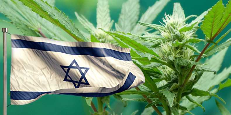 Israel releases transitional guidelines for medical cannabis exports