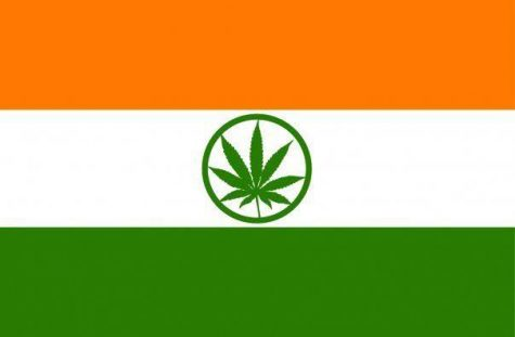 Indian government will allow cannabis research for the first time