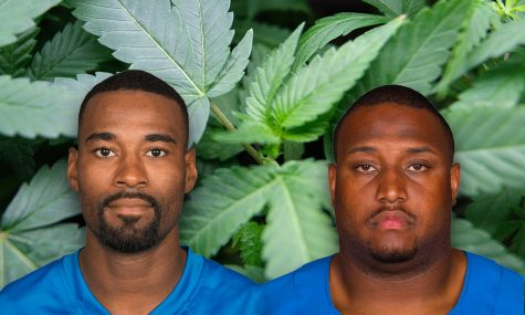 From football to weed: Former Detroit Lions players join forces with Harvard to study cannabis