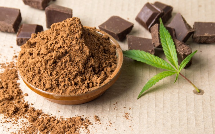 https://www.confectionerynews.com/Article/2017/12/14/Chocolate-not-strong-marijuana-flavor-wins-edible-cannabis-consumers