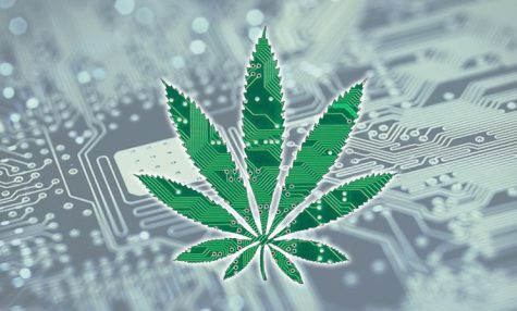How will artificial intelligence (AI) bolster the cannabis industry?