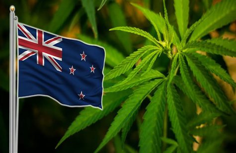 New Zealand is leaning towards recreational cannabis legalization for 2020