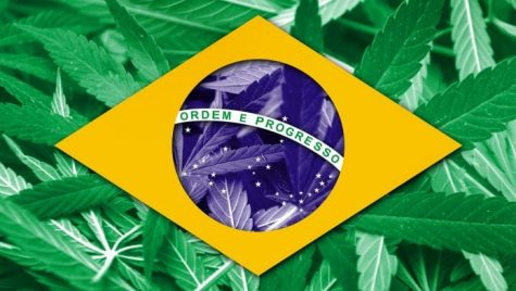 Brazil legalizes medical cannabis imports and domestic industrial hemp cultivation