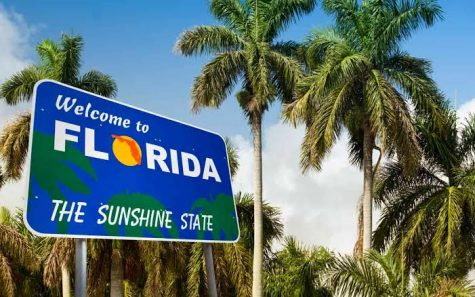 Study pins Florida as one of the top-five states for cannabis employment growth