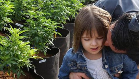 Unexpected death of Charlotte Figi sends emotional rift through the cannabis industry