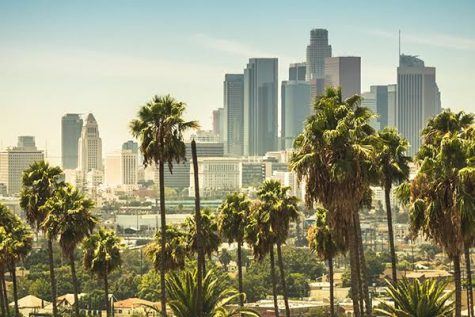 Approved amendments to Los Angeles cannabis rules could stimulate policy reform