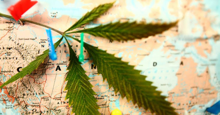 Cannabis+tourism+receives+a+positive+response+from+surveyed+travelers