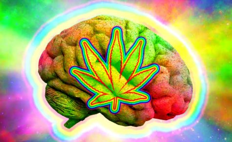Federal Commission encourages research into cannabis and psychedelics use among military Veterans