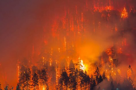 Wildfires pose a major concern for Oregon