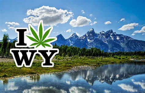 http://www.thcfinder.com/marijuana-blog/news/2014/01/marijuana-legalization-initiative-filed-in-wyoming