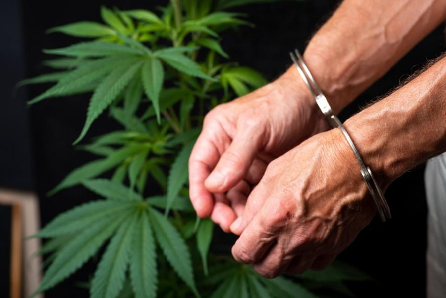 https://www.forbes.com/sites/joanoleck/2020/09/15/national-expungement-week-sept-19-26-will-highlight-cannabis-industrys-biggest-contradiction/?sh=23cdc7aab65f