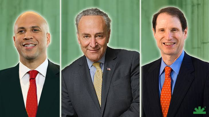 Schumer prioritizing federal cannabis legalization in reform effort with two other U.S. senators