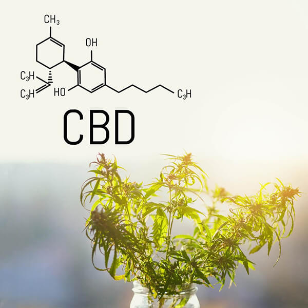 https://www.doylestownhealth.org/about/news/health-news-and-blog/what-is-cbd-and-is-it-safe