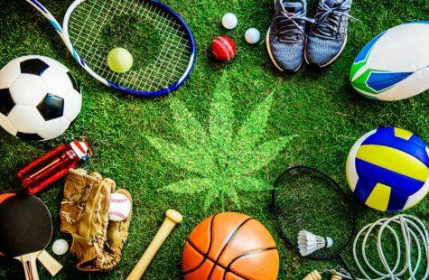 https://www.cannamd.com/pro-athletes-who-use-marijuana/