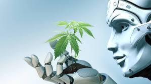 Artificial intelligence (AI) demonstrates potential for precision drug discovery, how it could affect the cannabis industry