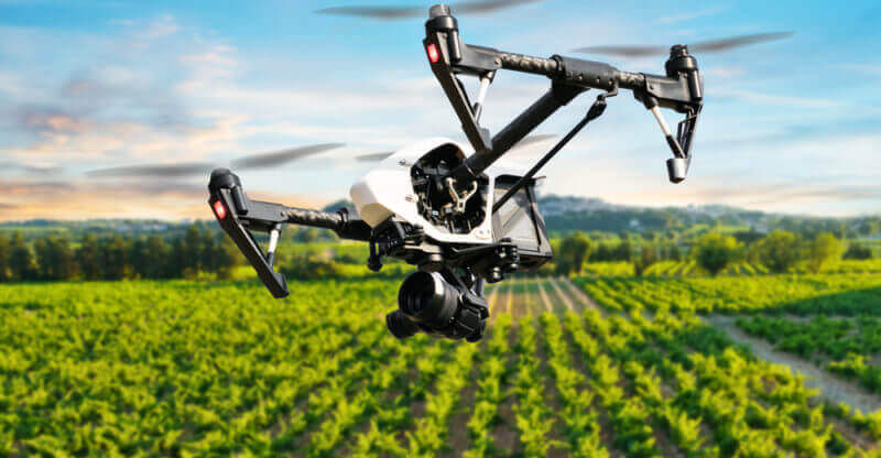Drones are emerging as valuable tools for outdoor cannabis cultivators