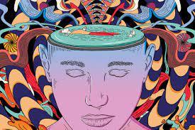 https://www.newscientist.com/article/mg23631530-300-mind-menders-how-psychedelic-drugs-rebuild-broken-brains/