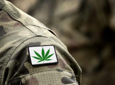 https://thecannabisindustry.org/new-veterans-cannabis-research-bill-the-care-act/